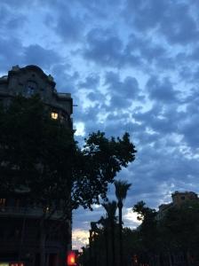 Pre-sunrise run